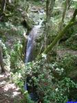 Ruisseau de Brouis: