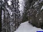 PICT5047: La route enneigée.
