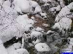 PICT5052: Le ruisseau qui descend du col.