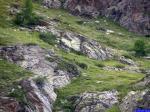 Plateau de Morgon: