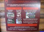 Communication des loups: Parc Alpha
